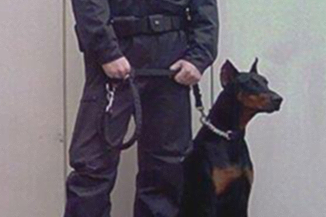 Security Dog Handler Training Courses