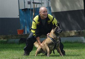 20-dog-discipline-training
