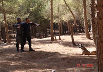 23-malinois-security-dog-training