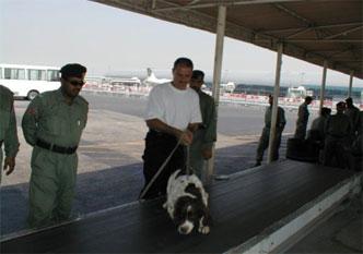27-dubai-airport-sniffer-dog